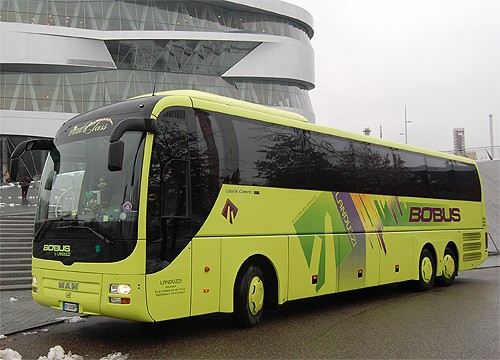 Man Lion's Coach 62